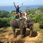 Beautiful day for an elephant ride.