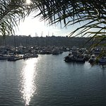 Marina view (from hotel sidewalk)