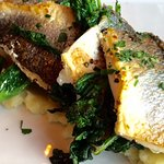Fish Special with (Tender) Broccoli Rabe