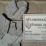 Florissant Fossil Quarry ภาพถ่าย