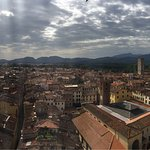 View from the top of the Guinigi Tower!