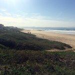 Dolphin Beach - Jeffrey's Bay, South Africa