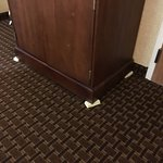 Comfort Inn Mechanicsburg/Harrisburg - South Foto