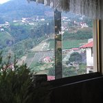 Foto de Hotel Selva Negra