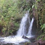 Esta es una de las cascadas que se pueden ver durante el trekking al alerce milenario.