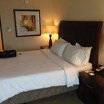 Foto de Hilton Garden Inn Mobile West I-65/Airport Blvd.