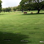 rows and rows of grave stones