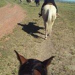 Medora riding stables
