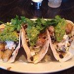 Excellent fish tacos