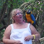 This is me with one of the parrotts they were so beautiful.I love birds so i was in my element