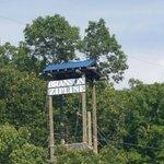 Foto de Branson Zipline and Canopy Tours
