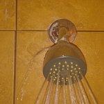 shower head leaking all around