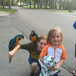 Photo de Lake Rudolph Campground & RV Resort