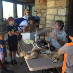 docent so funny and captivating all kids enraptured. A must visit