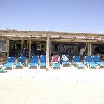 full sun or shaded beach chairs