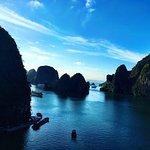 Foto de Vega Travel