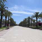 Foto de Avenida Jaume I