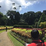 Photo de Royal Botanical Gardens
