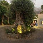 Ikaros Beach Resort & Spa Foto