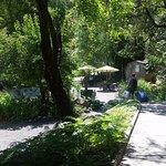 Photo de Orr Hot Springs Resort