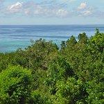 Bohol Sea as Backdrop