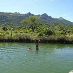 Photo de Sabeto Hot Springs and Mud Pool