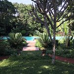 Ngare Sero Mountain Lodge Foto