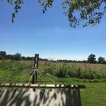 Tuddenham Mill Foto