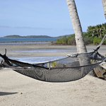 Inviting hammock
