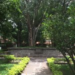 Photo de AyurvedaGram Heritage Wellness Centre