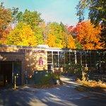 Fall Time at LFC