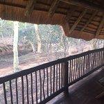 Ubizane Wildlife Reserve Foto