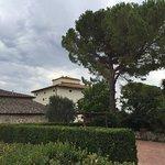 Azienda Agricola Cercignano