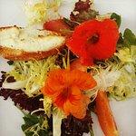 Vin11 Summer Salad