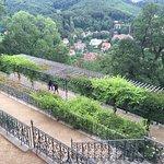 Schloss Wernigerode Foto