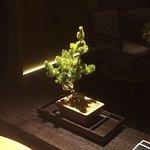 In room Bonsai Tree.