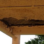 hole overhead on 2nd floor walkway/breezeway