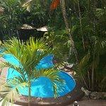 Foto de Hotel Aventura Mexicana