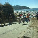 Foto de Playa de Patos