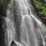 Parque Natural da Ribeira dos Caldeiroes Foto