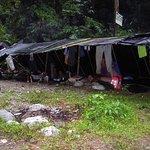 Ecolodge Bukit Lawang Foto