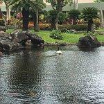 Kaua'i Marriott Resort Foto