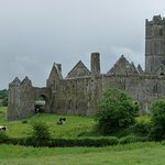 Quin Abbey is nearby and worth a visit
