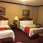 Hotel Newton Foto