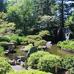 Japanese Garden 2015