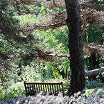 July 2015 Inviting bench