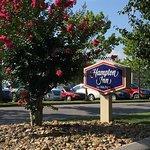 Hampton Inn Lenoir City Foto