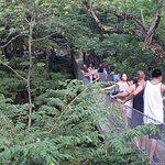 Photo de Xcaret Eco Theme Park