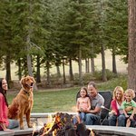 The fire pit is a great place to hang out for a family -free S'mores every afternoon!