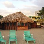 the beach bar and restaurant